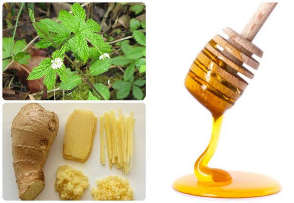 12 DIY Natural Remedies - It will be critical survival advantage to understand and identify DIY natural remedies even if you think you will never need them.