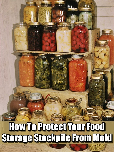 How To Protect Your Food Storage Stockpile From Mold