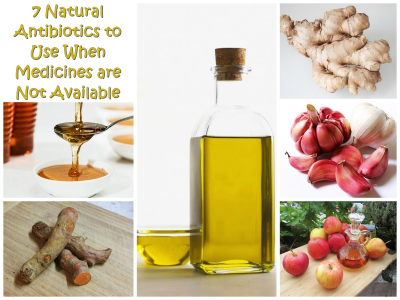 7 Natural Antibiotics to Use When Medicines are Not Available