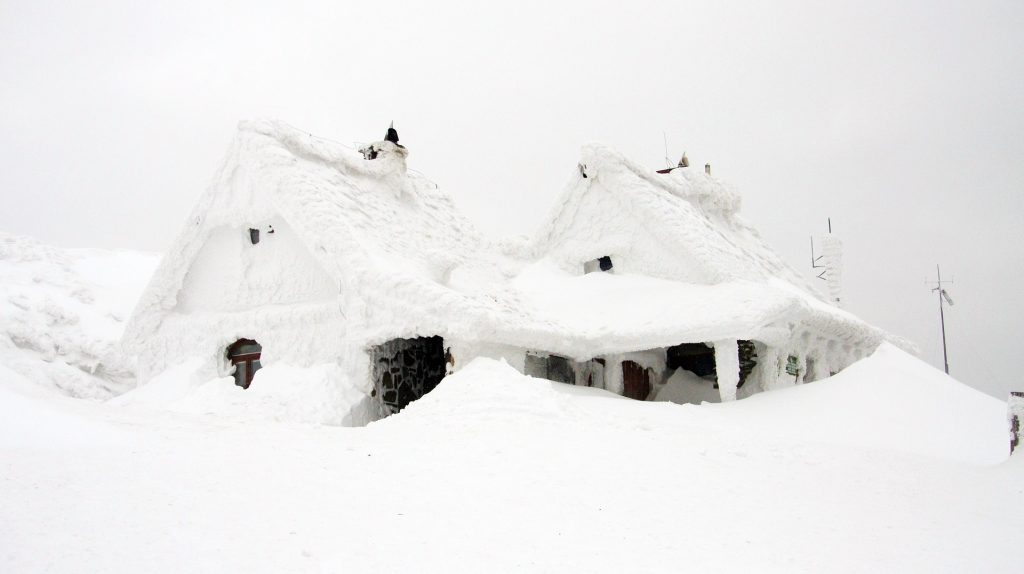 Snow storms are one of the most common types of natural disasters and how to prepare for each one. Being prepared is important so you can keep your family safe.