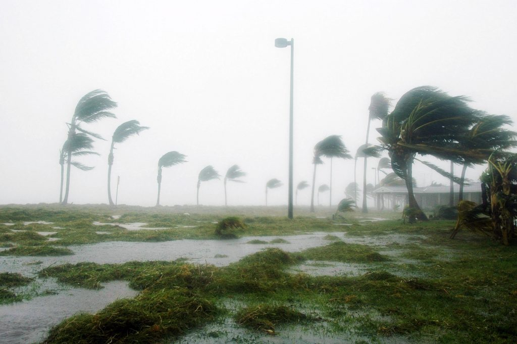 Hurricanes are one of the most common types of natural disasters and how to prepare for each one. Being prepared is important so you can keep your family safe.
