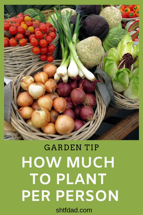 Do you wonder how much to plant per person in your home garden? Stop guessing and use our chart to plan your garden. #gardening #homesteading #gardenplanning #organic #harvestplanning #shtfdad