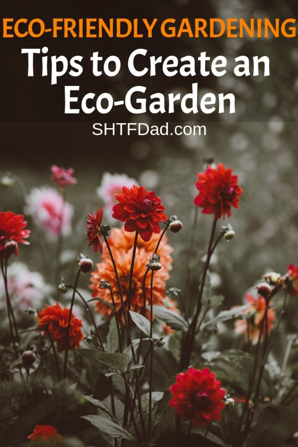 Eco friendly gardening is great for both you and the planet. You can save money and help the environment at the same time. #ecofriendlygardening #gardeningtips #environmentalism #shtfdad