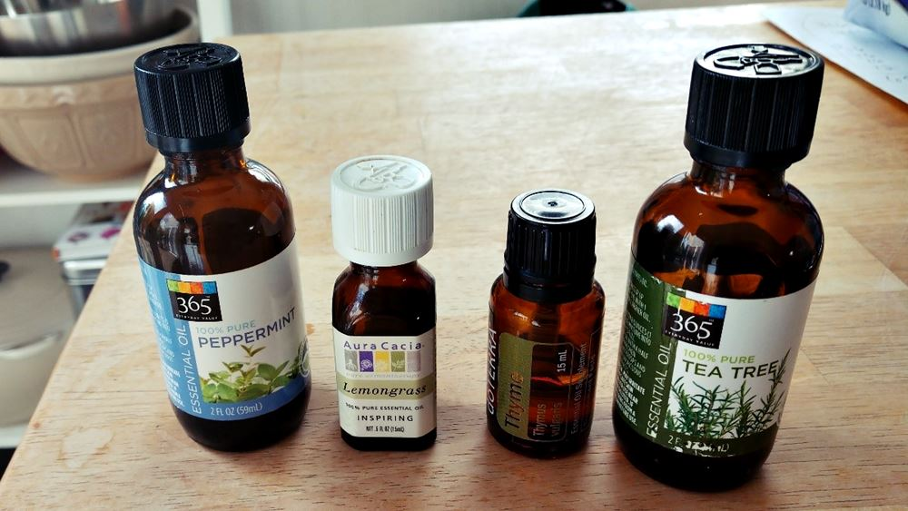 Essential oils you can use to treat your bees - How To Start Beekeeping For Beginners - Want to keep bees on your homestead? Here's how to start beekeeping for beginners: all you need to know to be successful keeping bees.