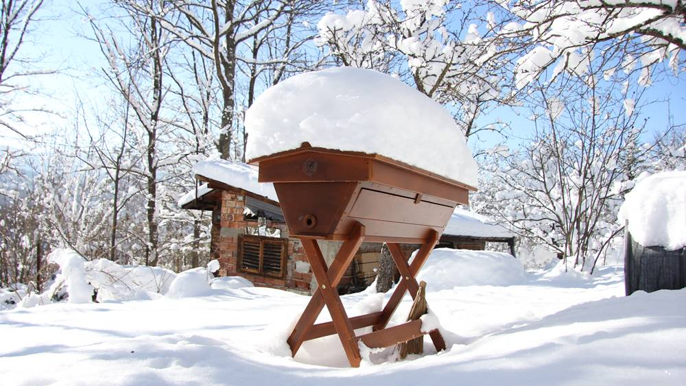 Top Bar Hive in Winter & Snow - How To Start Beekeeping For Beginners - Want to keep bees on your homestead? Here's how to start beekeeping for beginners: all you need to know to be successful keeping bees.