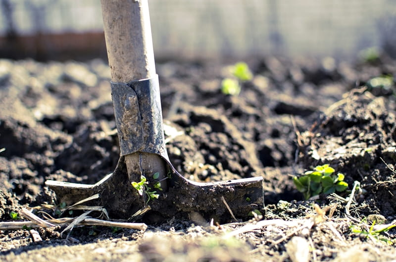 Amend the Soil - Preparing Your Garden For Winter