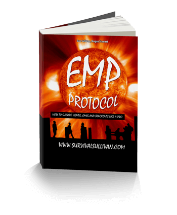 emp electromagnetic survival course