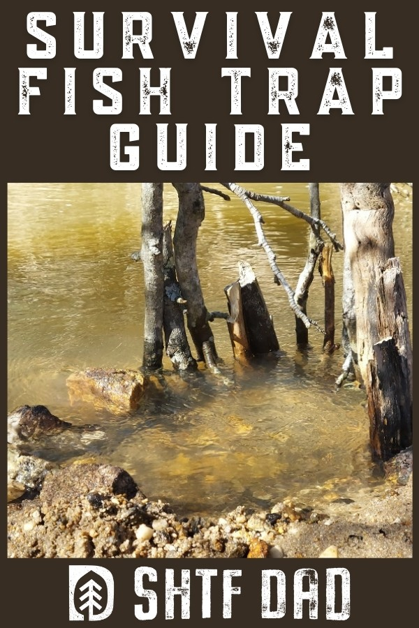 This survival fish trap guide is going to open your eyes to a survival food source that is captive and can be had through simplistic traps.